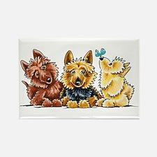 3 Australian Terriers Magnets