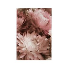 Antique Strawflowers Rectangle Magnet