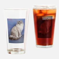 blue tabby colourpoint siberian cat Drinking Glass