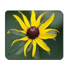 Black Eyed Susan Flower Mousepad