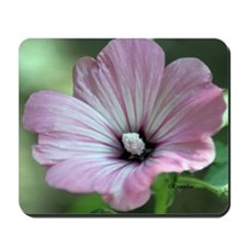 Bloom Of A Flower In The Garden Mousepad