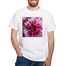 Pinks Shirt