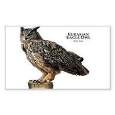 Eurasian Eagle Owl Decal