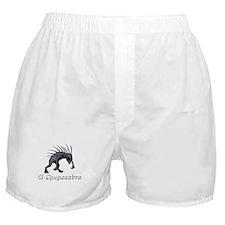 Chupacabra Grey Scales Boxer Shorts