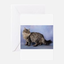 siberian spotted tabby cat Greeting Cards