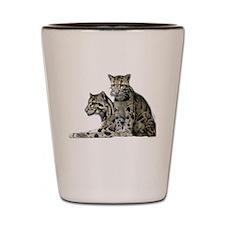 Funny Big cat Shot Glass
