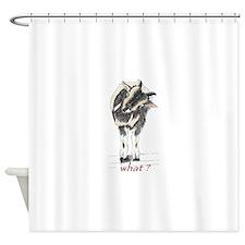 sir captain sebastian says what Shower Curtain