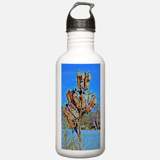 Yucca Plant Water Bottle
