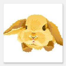 """Fuzzy Lop Eared Bunny Square Car Magnet 3"""" x 3"""""""