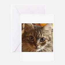 Cute tabby siberian kitten face Greeting Cards