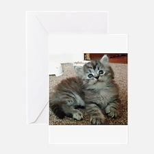 Cute Silver Siberian kitten on carpet Greeting Car