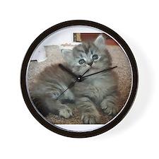 Cute Silver Siberian kitten on carpet Wall Clock