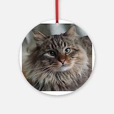 Siberian Tabby Cat face Ornament (Round)