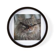 Siberian Tabby Cat face Wall Clock