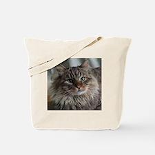 Siberian Tabby Cat face Tote Bag
