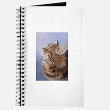 siberian tabby cat profile Journal