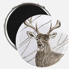 Brown Deer Magnets