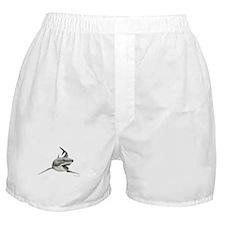 Great White Shark ~ Boxer Shorts