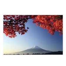 Mt Fuji  Postcards (Package of 8)