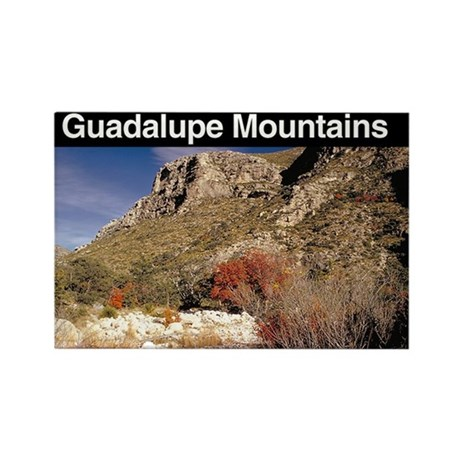 Guadalupe Mnts NP Rectangle Magnet (100 pack)