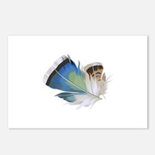 FEATHERS Postcards (Package of 8)