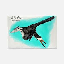 Black Skimmer Rectangle Magnet