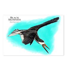 Black Skimmer Postcards (Package of 8)