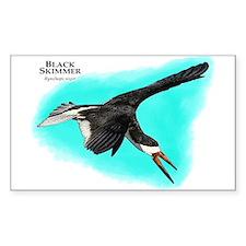 Black Skimmer Decal