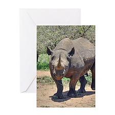Rhinoceros Greeting Cards