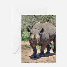 Rhinoceros Greeting Cards