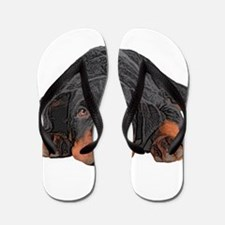 Colored Pencil Drawing Rotweiler Puppy Flip Flops