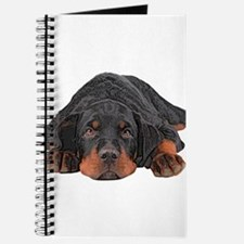 Colored Pencil Drawing Rotweiler Puppy Eye Journal