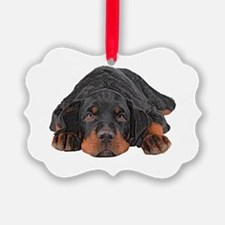 Colored Pencil Drawing Rotweiler Ornament