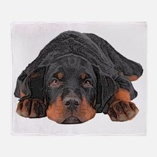 Colored Pencil Drawing Rotweiler Pup Throw Blanket