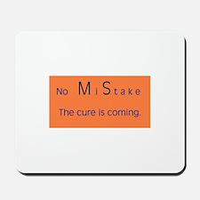 No MiStake.JPG Mousepad