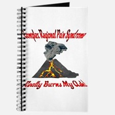 CRPS Really Burns My Ash Volcano Red Journal