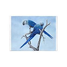 Spix macaw 5'x7'Area Rug