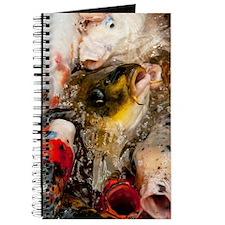 Photography koi Journal