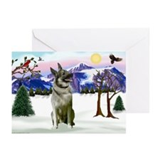 Winter Norwegian Elkhound Greeting Cards (Pk of 20