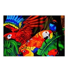 Parrot Paradise Postcards (Package of 8)
