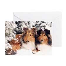 Snow Shelties Christmas Cards (Pk of 10)