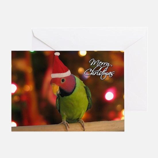 Plum Headed Parakeet Single Christmas Card