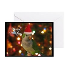 Quaker Parakeet Single Christmas Card