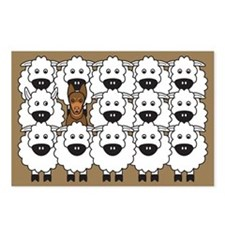Red Kelpie and Sheep Postcards (Package of 8)