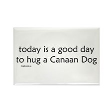 Hug a Canaan Dog Rectangle Magnet (10 pack)