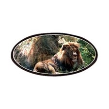 Lion Spirit.png Patch