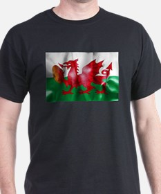 Welsh Dragon Rugby Ball Flag T-Shirt