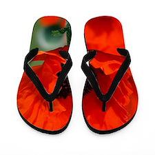 Cute Red poppy Flip Flops