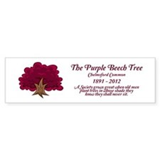The Purple Beech Tree Bumper Bumper Sticker