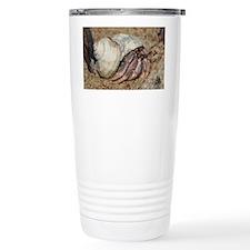Hermit Crabs Rock Thermos Mug